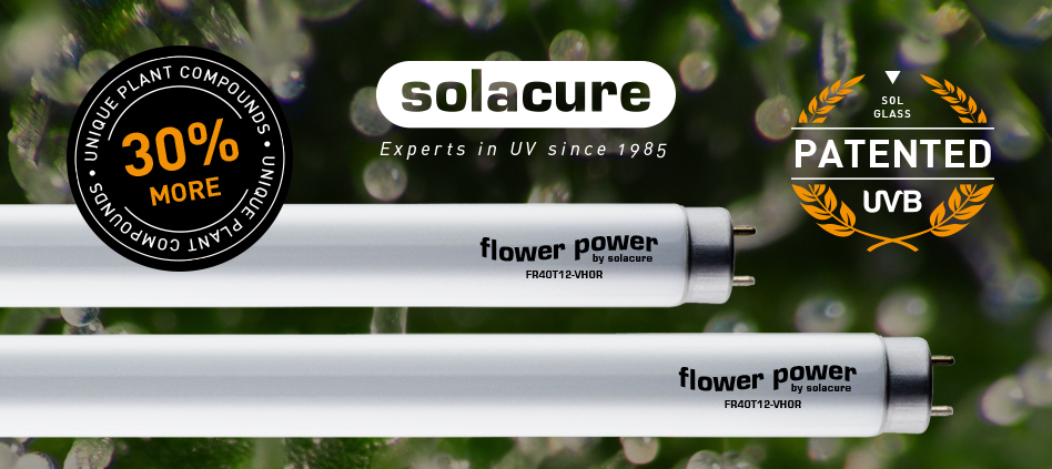 Solacure Distributed in the UK and Europe by FDP Wholesale